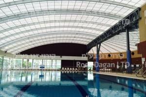 בניית בריכת שחיה